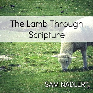 The Lamb through Scripture (MP3)