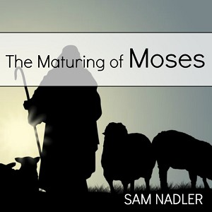 The Maturing of Moses (MP3)
