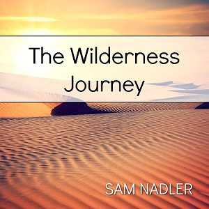 The Wilderness Journey (MP3)